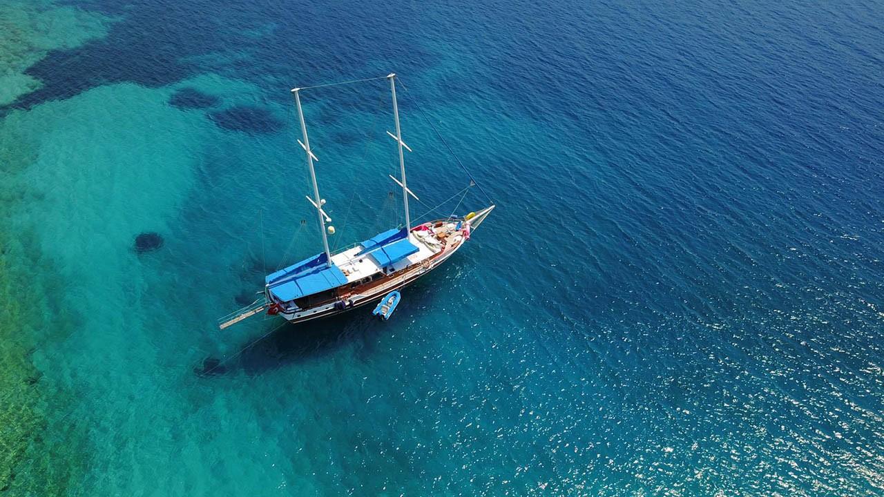 Blue Cruise