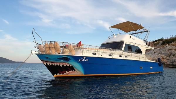 Syana Моторная яхта